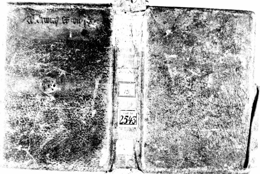 bsb00008165_00001.jpg