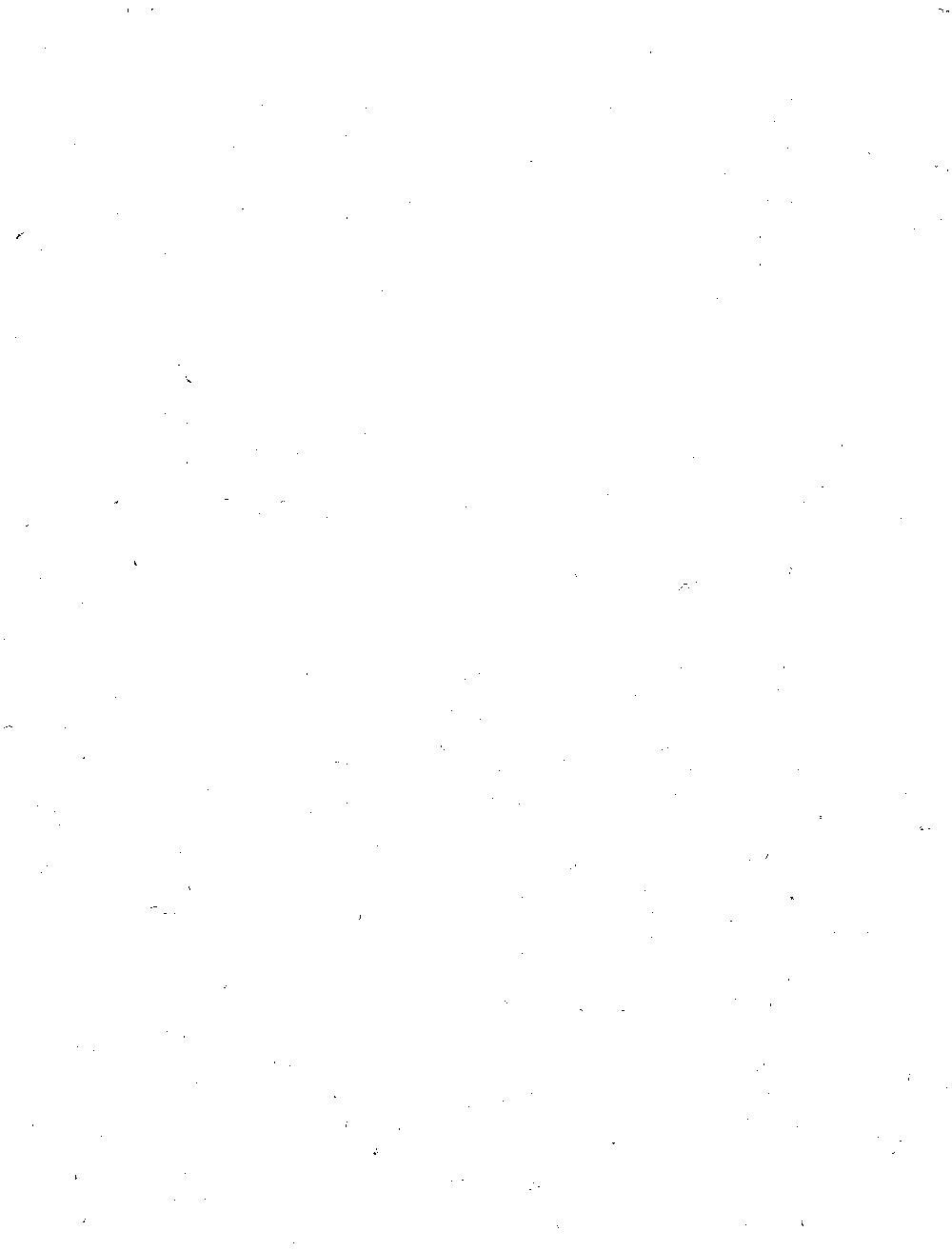 bsb00005569_00005.jpg