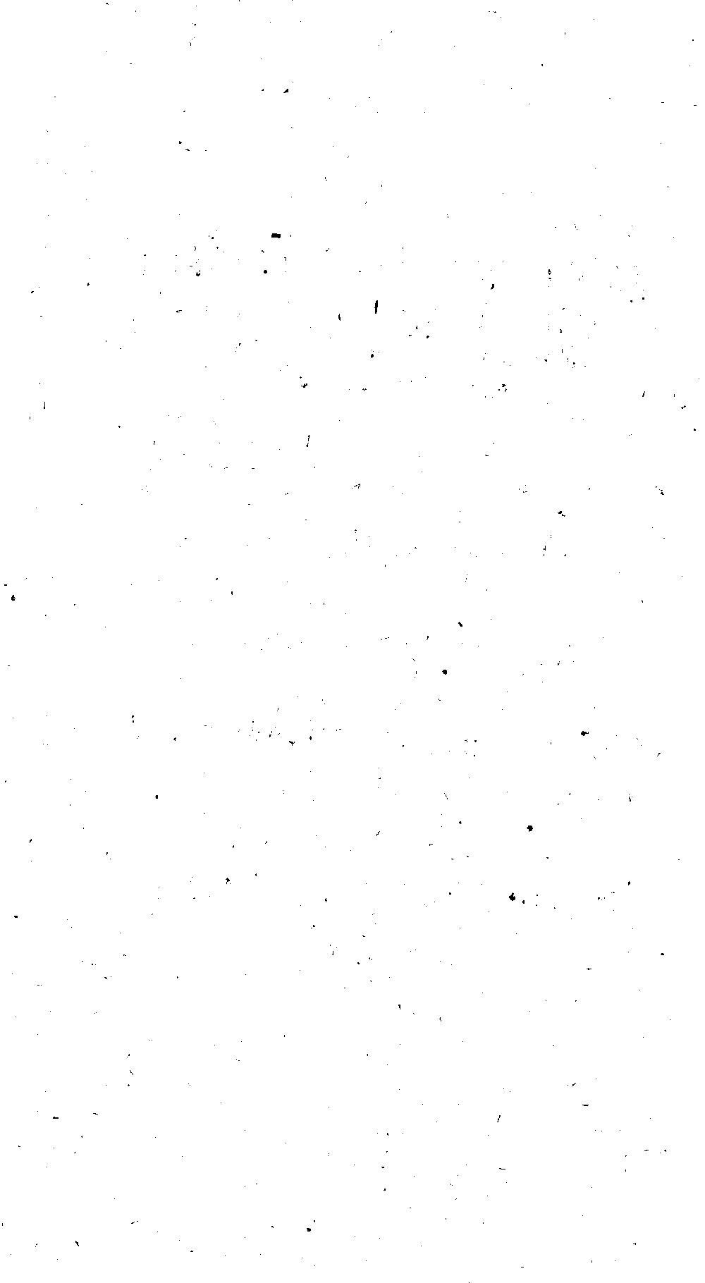 bsb00010528_00005.jpg