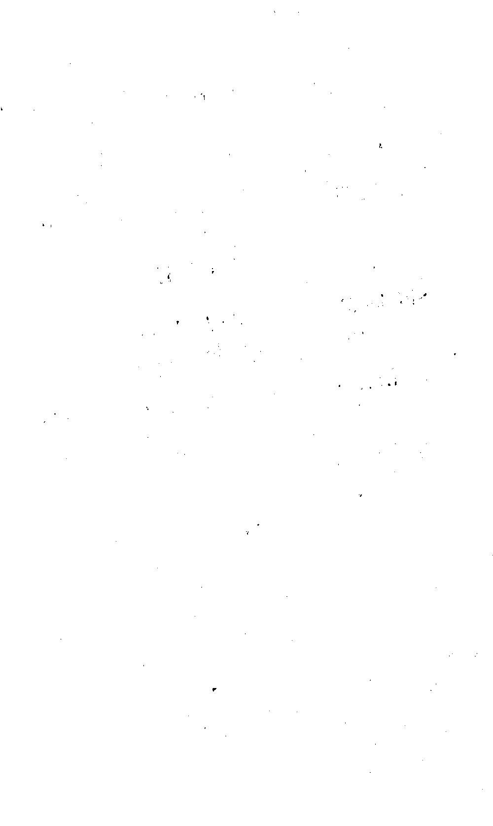 bsb00012066_00005.jpg